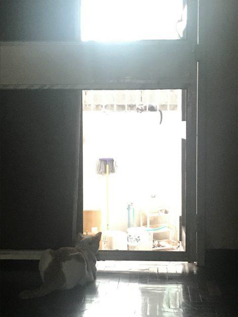 灯の消えた1階奥スタッフルーム通用口