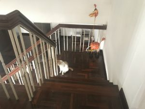 明かりの消えた階段